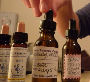 Making up the Bach Flower Remedies